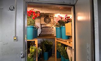 大型冷蔵倉庫で花を保管