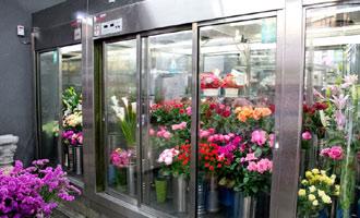冷蔵ケースで保管される生花